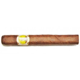 Bolivar Petit Coronas CAB -  50 cigars