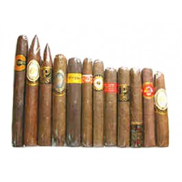 Perdomo Seleccion Sampler - 12 cigars