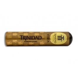 Trinidad Vigia Tubos - 01