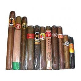 Handcrafted Premium Coronas Sampler - 11 cigars