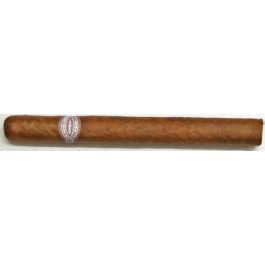 Rafael Gonzalez Panatelas Extra - 25 cigars