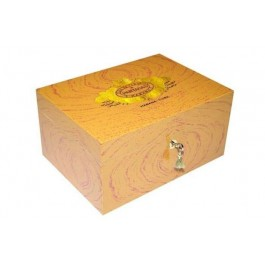 Partagas Humidor Closed